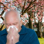 http://www.dreamstime.com/royalty-free-stock-photos-allergies-image19384328